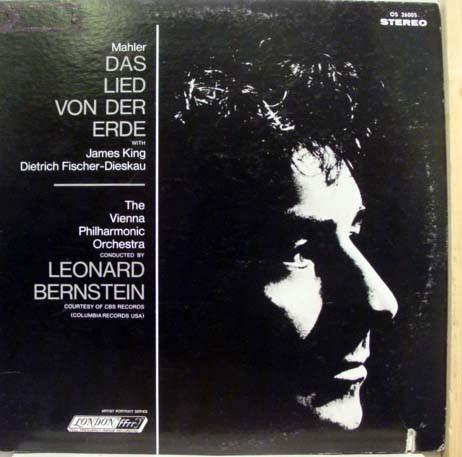 bernstein-dfd2