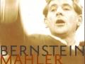 bernstein-kollo6