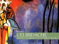celibidache6